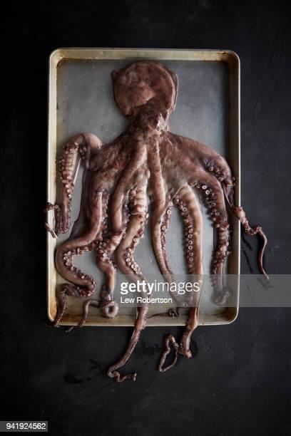 Octopus on sheet pan