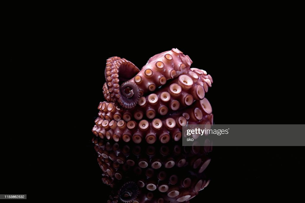 Octopus Tentacle Food : Stock Photo