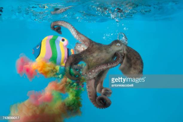 Octopus underwater with a conceptual multi-colored ink cloud