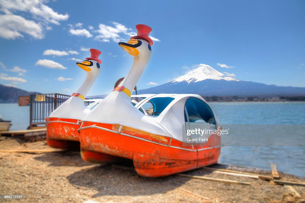 Odd ducks. : Stock Photo