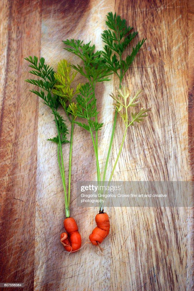 Odd Shaped Carrots : Stock Photo