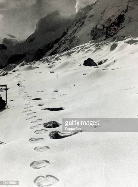 Oddities Mythical Creatures Abominable Snowman pic circa 1961 This picture was brought back from the expedition to Mount Everest and shows supposedly...