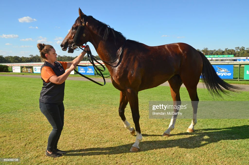Odeon (NZ) and strapper Rebecca Crampon after winning the Leon Weigard Class 1 Handicap at Bendigo Racecourse on March 14, 2017 in Bendigo, Australia.
