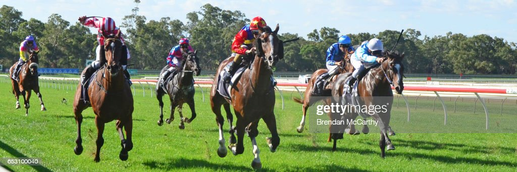 Odeon (NZ) ridden by Damian Lane wins the Leon Weigard Class 1 Handicap at Bendigo Racecourse on March 14, 2017 in Bendigo, Australia.
