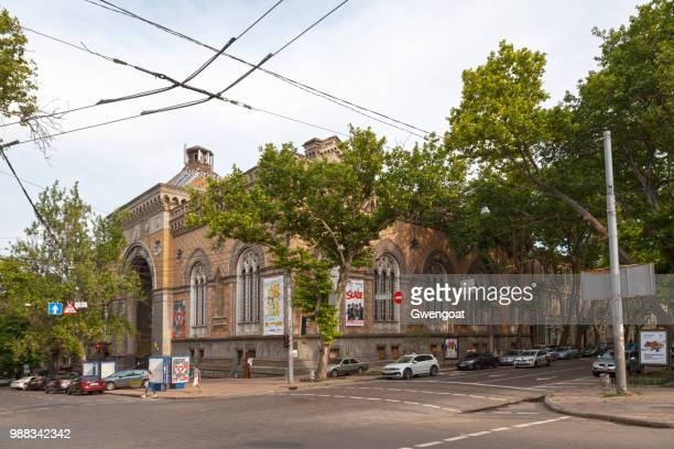 odessa's philharmonic theatre - gwengoat stock pictures, royalty-free photos & images