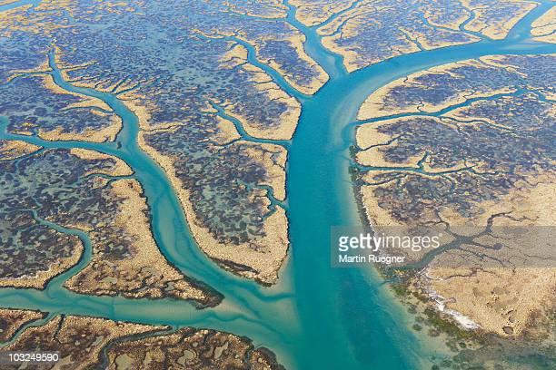 odiel marshes biosphere reserve, aerial view. - marisma fotografías e imágenes de stock