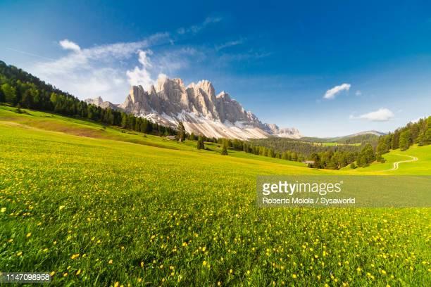 odle from malga caseril, funes, south tyrol, italy - terra coltivata foto e immagini stock