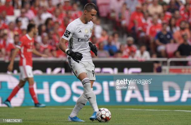 Odysseas Vlachodimos of SL Benfica in action during the Liga NOS match between SL Benfica and Gil Vicente FC at Estadio da Luz on September 14 2019...