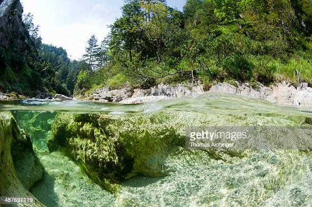 Oetscherbach stream in Oetschergraben gorge, near Mitterbach am Erlaufsee, Ybbstaler Alps, Lower Austria, Austria