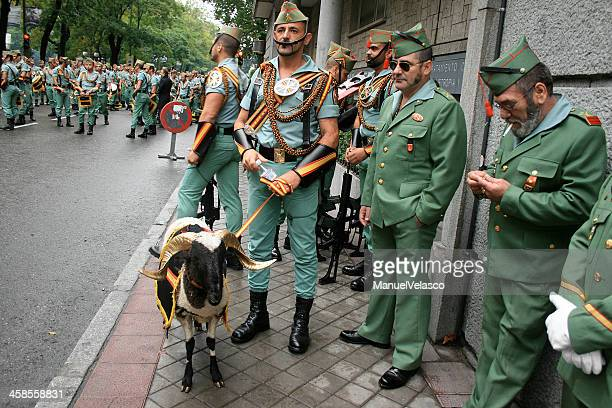 of goat and men - spanish military stock pictures, royalty-free photos & images