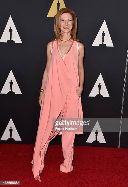 CEO of the Academy of Motion Picture Arts and Sciences Dawn Hudson attends the Academy Of Motion Picture Arts And Sciences' 2014 Governors Awards at...