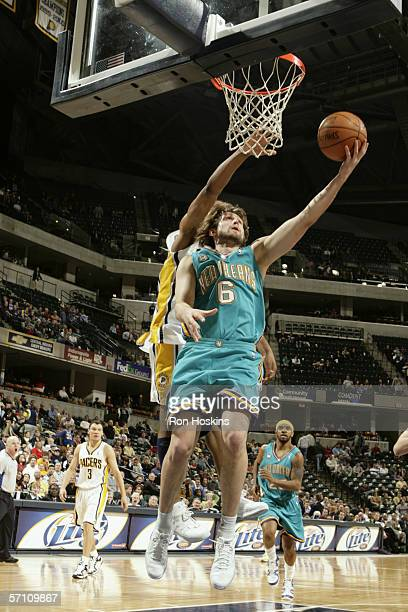 Of the New Orleans/Oklahoma Hornets shoots against the Indiana Pacers on February 21, 2006 at Conseco Fieldhouse in Indianapolis, Indiana. The Pacers...