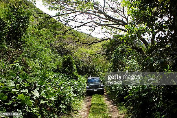 Off road driving in a Jeep at the Waipi'o valley in Kona Hawaii