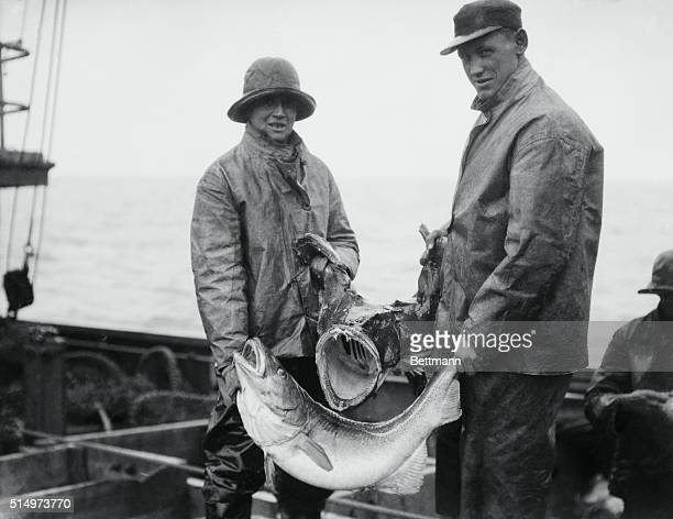Off the coast of Boston two fishermen both clad in traditional oilskins hold their recent catch of one 35pound cod and one monkfish | Location near...
