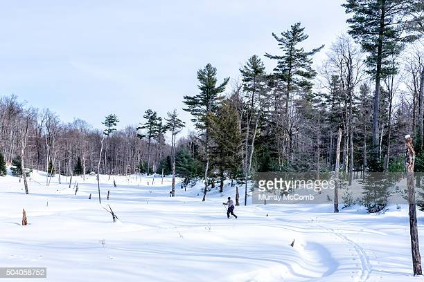 Off Trail Skiing in the wilderness