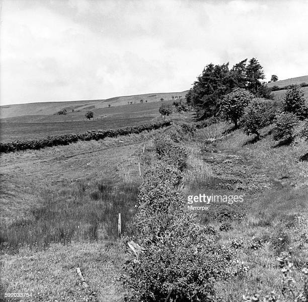Offa's Dyke is a large linear earthwork that roughly follows the current border between England and Wales. Looking up the slope to Llanfair Hill...