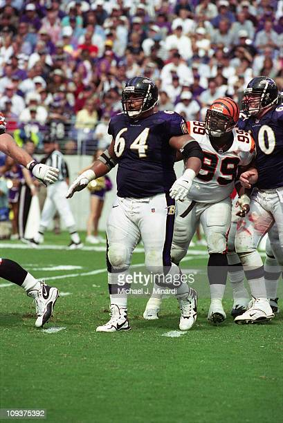 Offensive Lineman Edwin Mulitalo of the Baltimore Ravens ,Center Jeff Mitchell and Defensive Tackle Oliver Gibson of the Cincinnati Bengals in action...