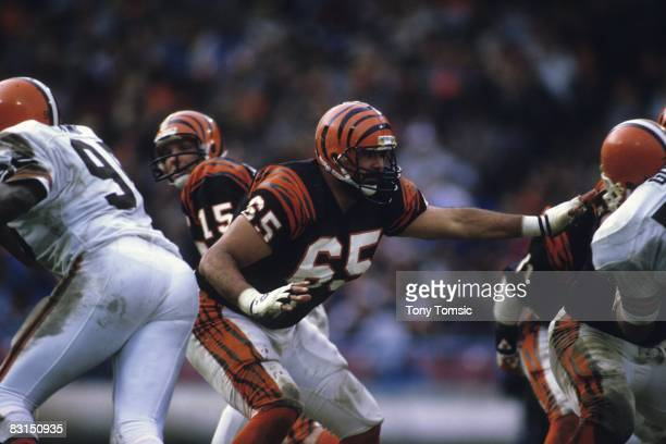 Offensive lineman Max Montoya of the Cincinnati Bengals sets up to pass block during a game on November 25 1985 against the Cleveland Browns at...