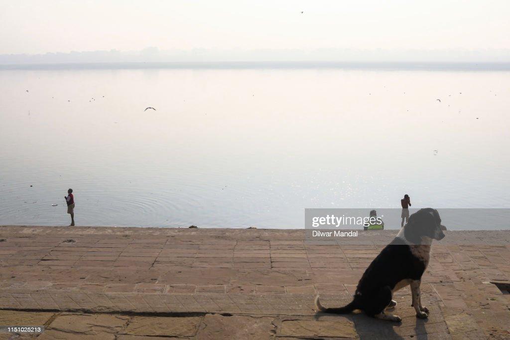 Offer Prayers At River Ganges In Varanasi : Stock Photo