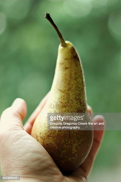 offering a pear - gregoria gregoriou crowe fine art and creative photography stock pictures, royalty-free photos & images