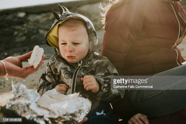 offering a sandwich to a fussy eater - a child looks unhappy and refuses to eat his lunch - temperature stock pictures, royalty-free photos & images
