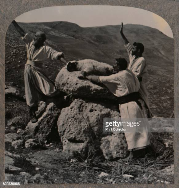 Offering sacrifice of lamb on Altar Moreh' c1900 From Journey in All Lands Palestine [Realistic Travels London Cape Town Bombay Melbourne Toronto...