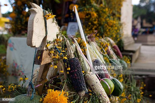 Offerings are displayed in an altar during celebrations of the Dia de los Muertos in the district of San Angel Zurumucapio on November 1 2009 in...