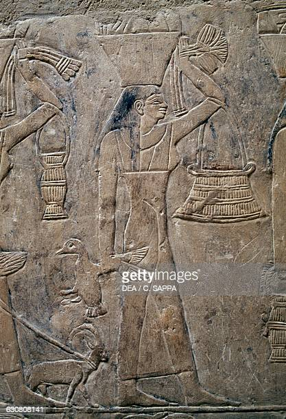 Offerings bearers painted relief Mastaba of Mereruka 2340 BC Necropolis of Saqqara Memphis Egypt Egyptian civilisation Old Kingdom Dynasty VI