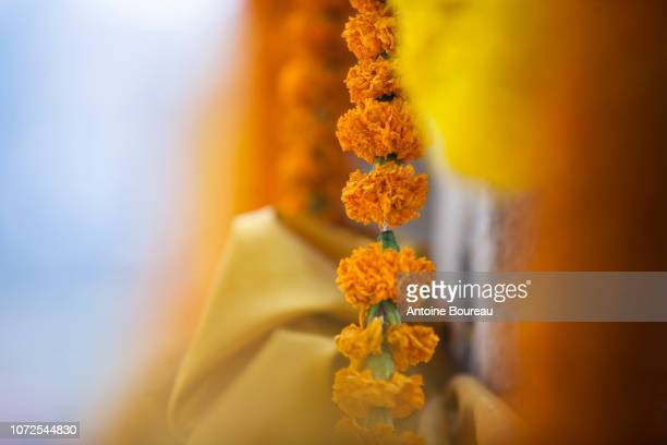 offerings of french marigolds made by pilgrims on the mahabodhi temple, bodhgaya, gaya, state of bihar, india - buddha state stock pictures, royalty-free photos & images