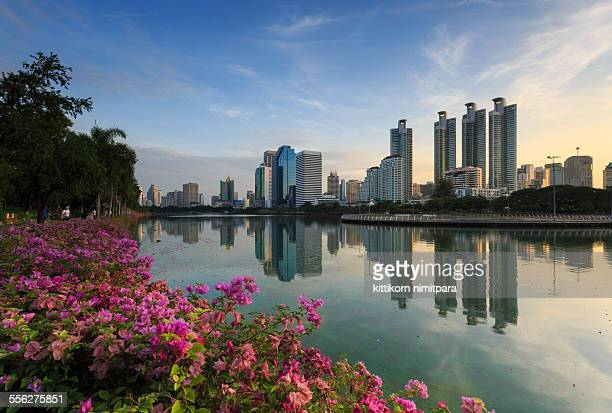 office building in morning - association of southeast asian nations stock photos and pictures