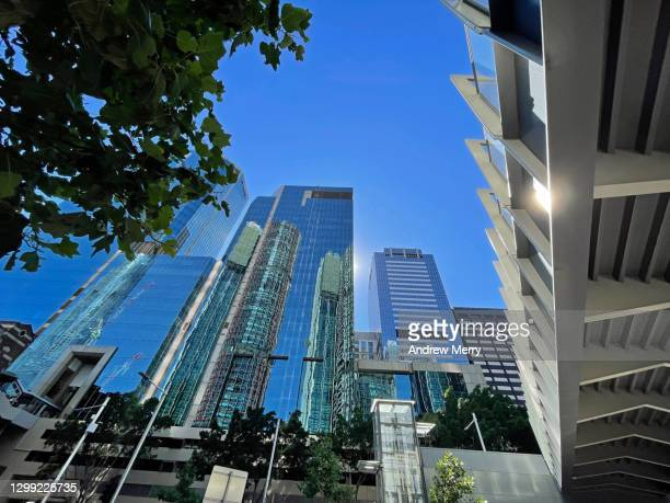 office buildings and elevated pedestrian walkway over street and tree - darling harbour stock pictures, royalty-free photos & images