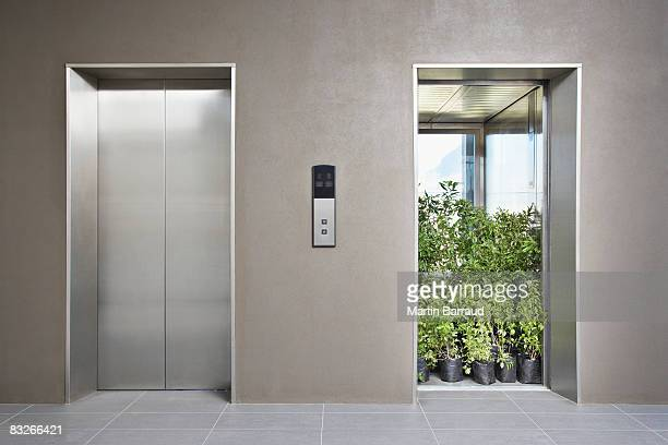 office elevator full of plants - responsible business stock photos and pictures