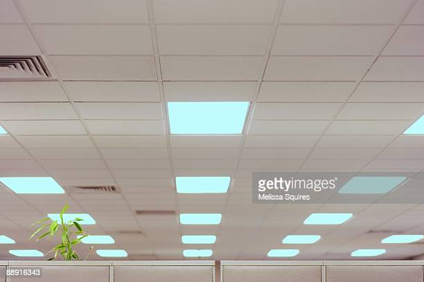 office fluorescent lights - fluorescent light stock pictures, royalty-free photos & images