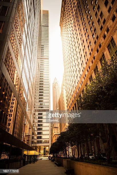 Office Skysraper in Direct Sun