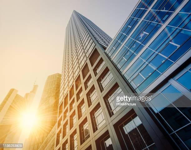 office skysraper in the sun - skyscraper stock photos and pictures