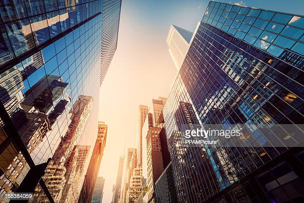 office skysraper in the sun - skyscraper stock pictures, royalty-free photos & images
