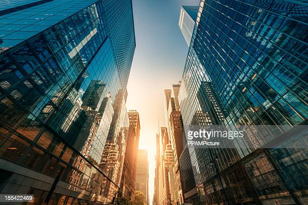 office skysraper in the sun - high street stock pictures, royalty-free photos & images