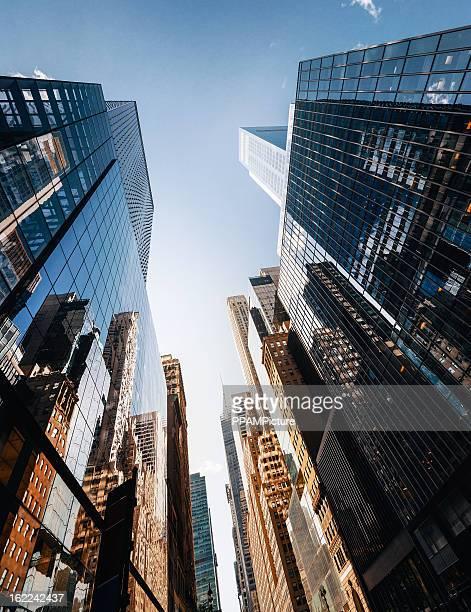 Office skysraper