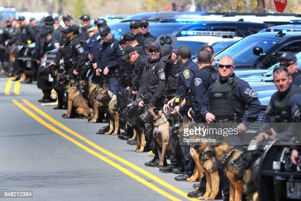 K9 officers line Higgins Crowell Road in Yarmouth MA as the funeral procession for slain Yarmouth K9 officer Sean Gannon approaches on its way past...