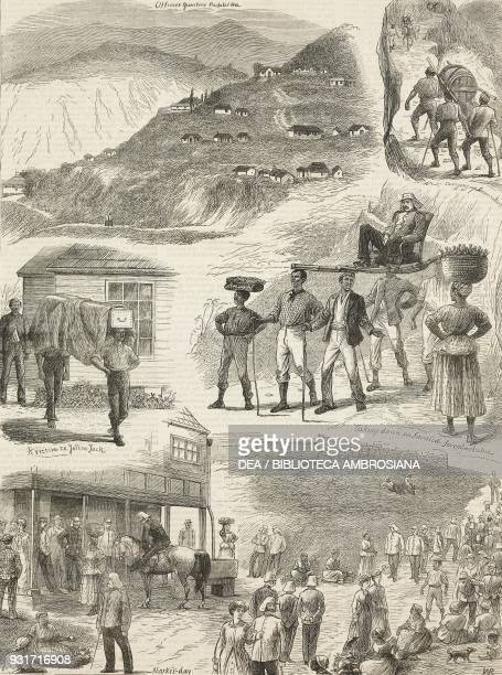 Officers quarters Carrying up ammunition A victim to Yellow Jack Taking down an invalid for embarkation Market day Newcastle Jamaica illustration...