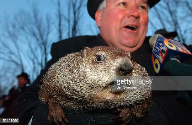 Official groundhog handler Bill Deeley holds Punxsutawney Phil as he talks to the local media February 2 2005 in Punxsutawney Pennsylvania Phil...
