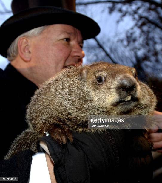 Official groundhog handler Bill Deeley holds Punxsutawney Phil on February 2 2006 in Punxsutawney Pennsylvania Every February 2 people gather at...