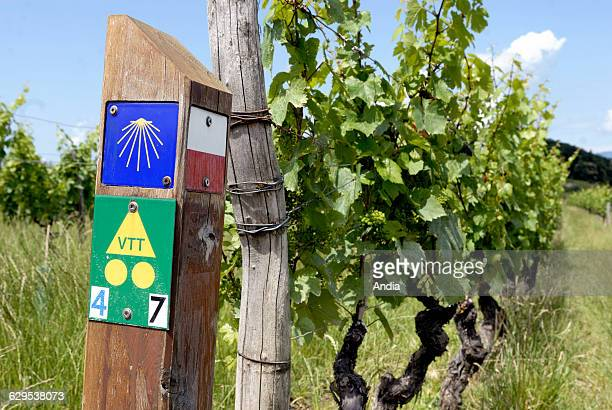 Official hiking trail markers on the Way of St James, Geneve-Le Puy-en-Velay, near Jongieux-le-Haut, Savoie department , Rhone-Alpes region, France....