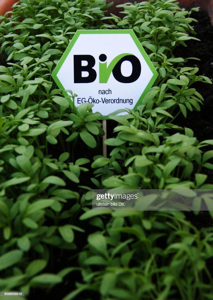 offzielles Bio-Siegel nach EG Oeko Verordnung in einem Kressebeet : Nachrichtenfoto