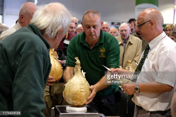 Officials weigh the onions during judging at the giant vegetable competition at the Harrogate Autumn Flower Show on September 13 2019 in Harrogate...