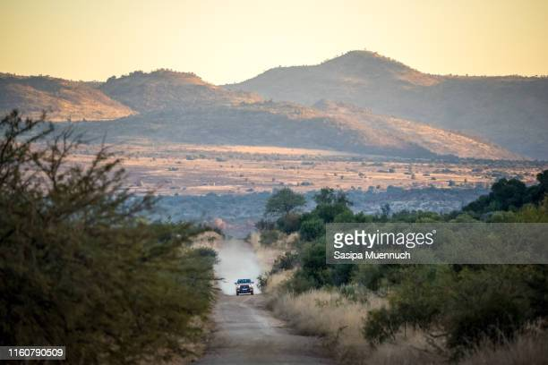 off-road car driving at pilanesberg game reserve - kruger national park stock pictures, royalty-free photos & images