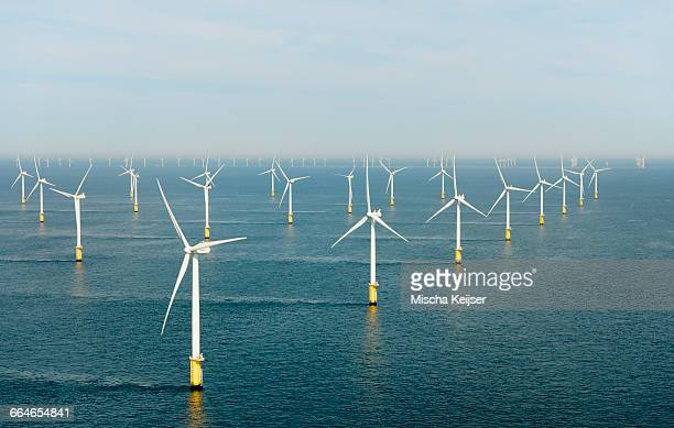 offshore wind farm, north sea - turbin bildbanksfoton och bilder