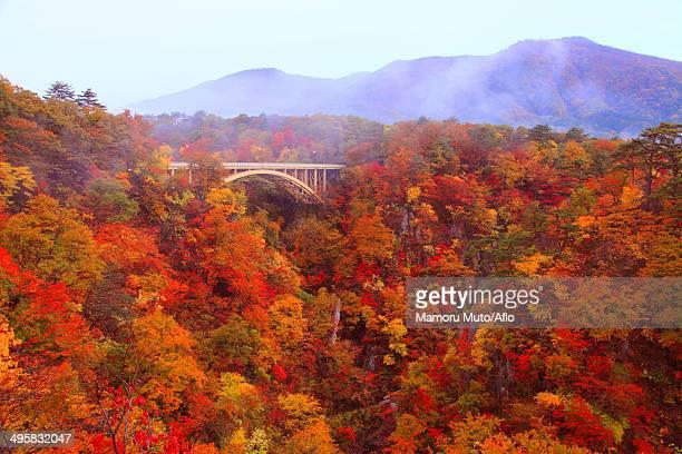 ofukasawa bridge, miyagi prefecture, japan - miyagi prefecture stock pictures, royalty-free photos & images
