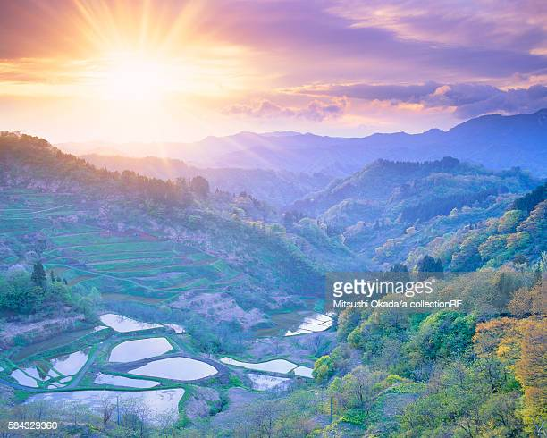 Ogamidake mountains and terraced paddy fields