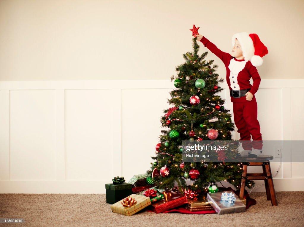 Oh Christmas Tree : Stock Photo